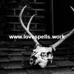 Voodoo Love Spells That Work Fast
